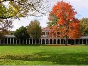Autumn on the Lawn